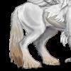 White Hippogryph Rump