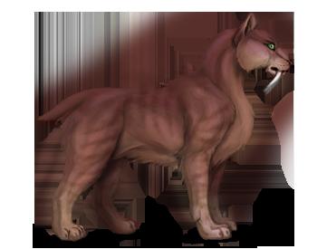 http://beastkeeper.com/resources/pets/cat/a5_b1_p01.png